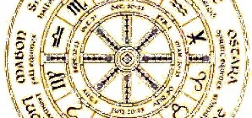 source: http://www.lacoupedesfees.com/fr/planche-medecine/1740-poster-roue-de-l-annee.html