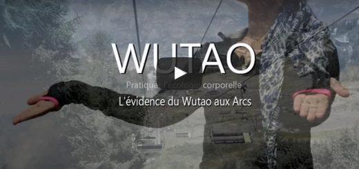 wutao arcs